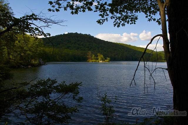 view 0002 Harriman State Park, New York, USA