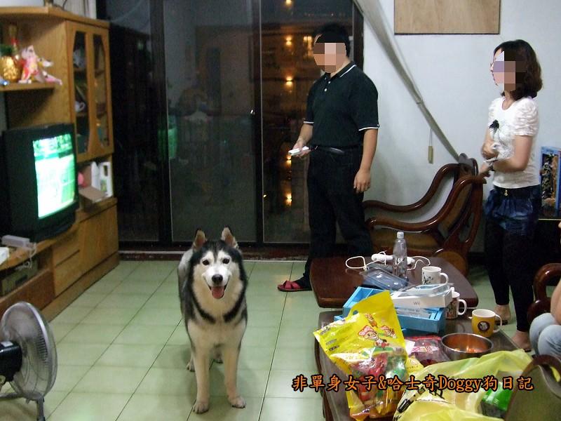 Doggy歡迎光臨13