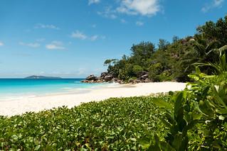 Anse Georgette の画像. sc seychelles praslin ansegeorgette