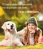 """""""If I had a dollar for everytime my dog made me smile…I'l..."""