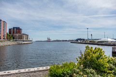 20160820 Saint John Harbour (1)