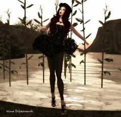 - Black Rose -