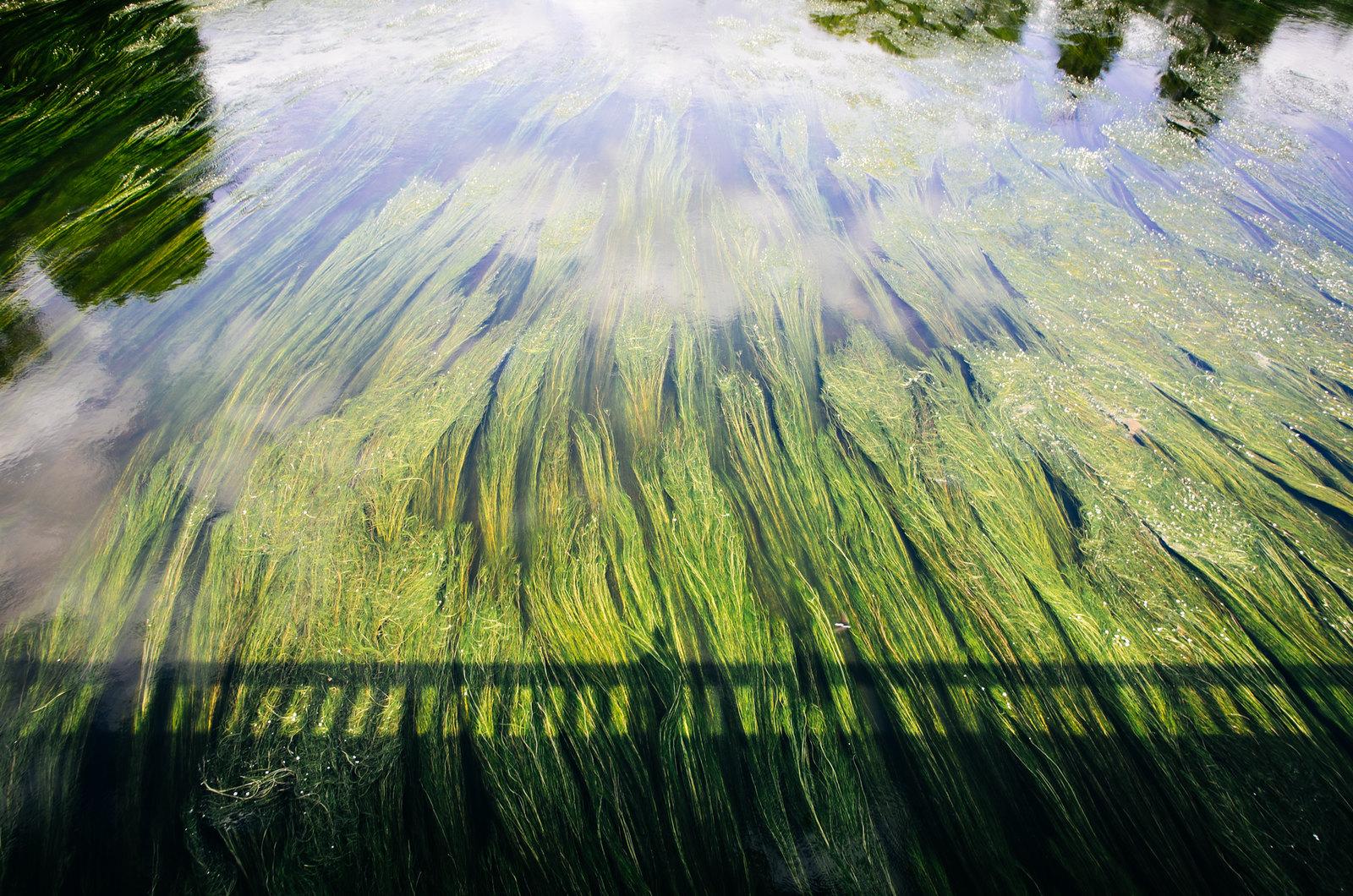 Balade dans les Ardennes - Le cours de la Meuse