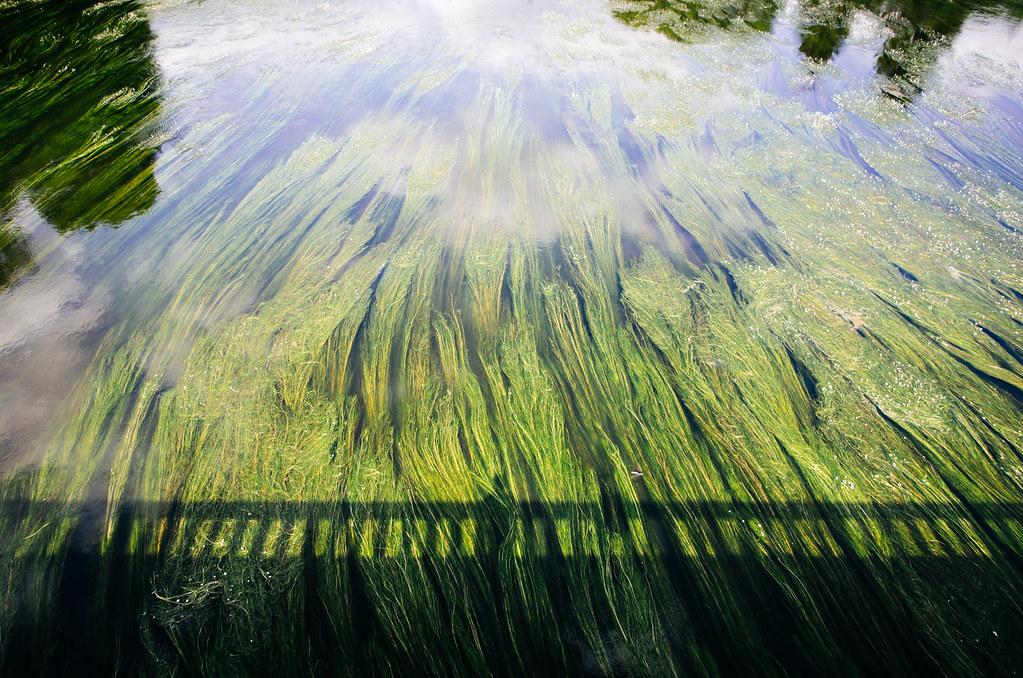Tourisme vert en France -Ardennes - Le cours de la Meuse