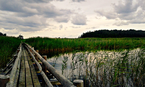 lake water sky clouds grass bridge naturereserve summer latvia nature outdoors walk wind tree wooden path kanieris