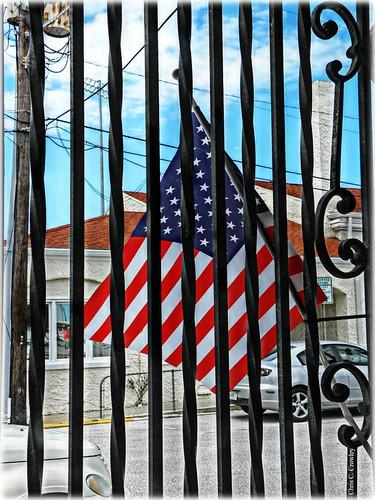 American Renaissance vs. American Annihilation