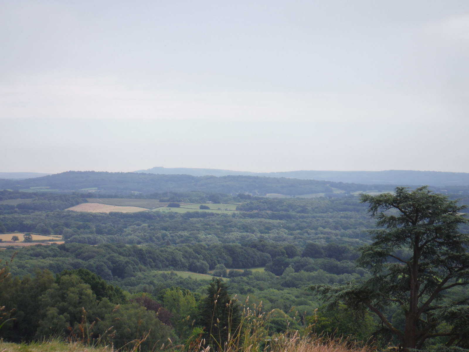 View from near Blackdown Park (house) SWC Walk 48 Haslemere to Midhurst (via Lurgashall or Lickfold)