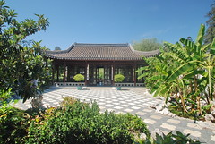 Chinese Garden, Huntington Gardens