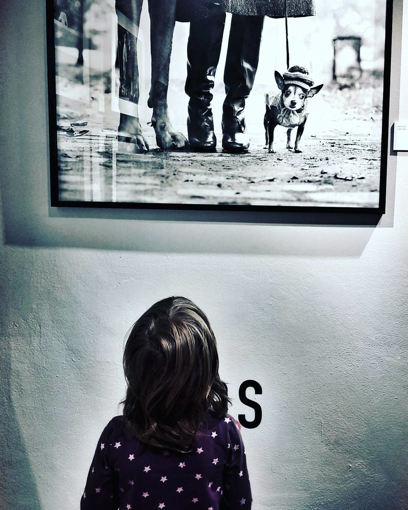 At The Erwitt Exhibition  #kids #kid #mybabygirl #Exhibition #Photography #photo #Margherita #fun #Erwitt #Travel #Travelgram #trip #igers #igersitalia #Italy #amazing #beautiful #love #photooftheday #picoftheday #blackandwhite #meandmybabygirl