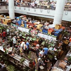 Otro día de mercado   #ciudad #city #stadt #mercado #market #Markt #HectorAOM #Venezuela #CcsEnImagenes #vscocam
