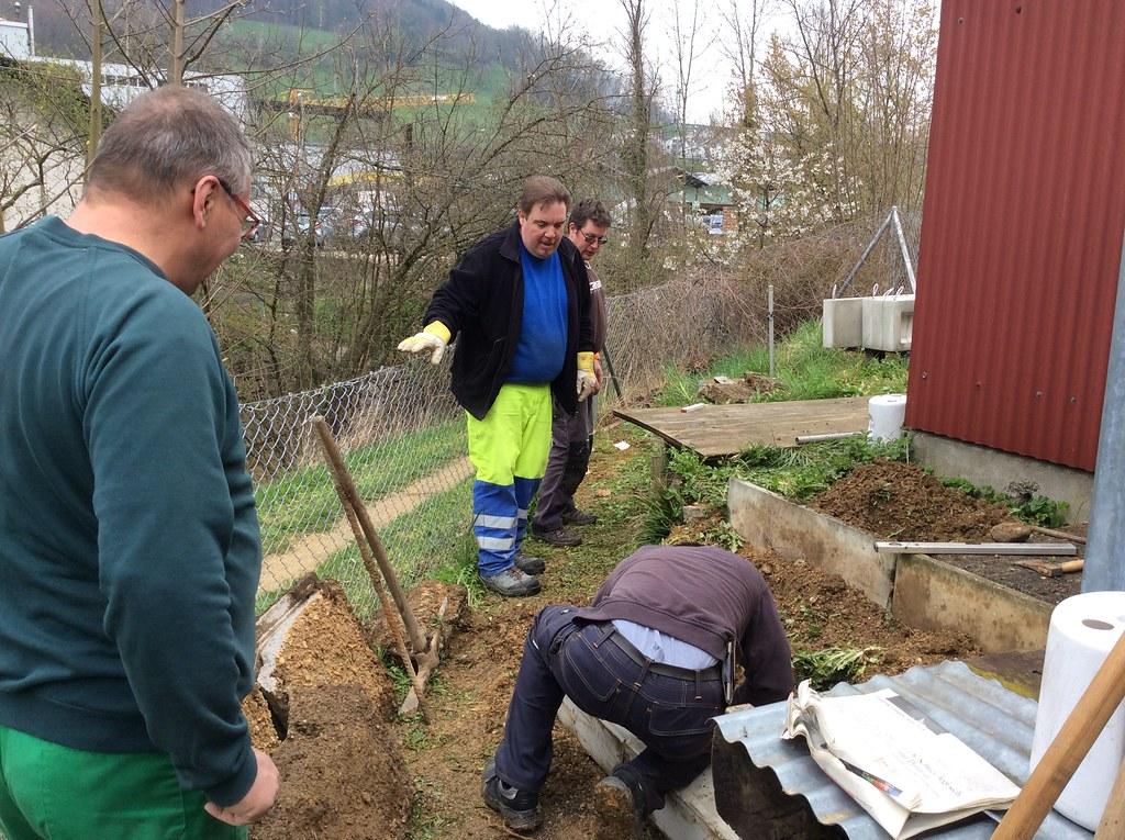 Bauen und Auswintern 09.04.2016