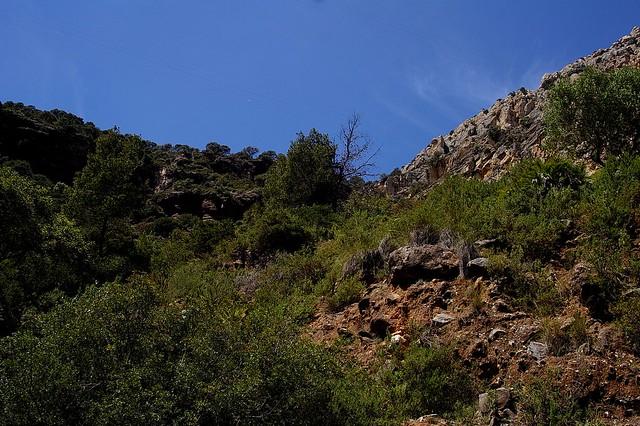Caminito del Rey - Árdales (Málaga) (42)
