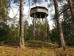 Puurijärvi - Isosuo