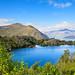 Mou Waho Island, Lake Wanaka by Dave Smith