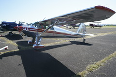 DSC07055