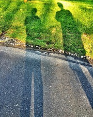 Long #summer #shadows
