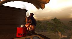 Critter Adventures - Squirrel Coffee on the FaireChylde 1
