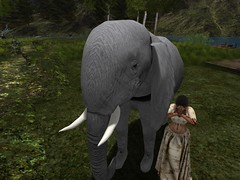 Namaste; In Honor of The Elephant