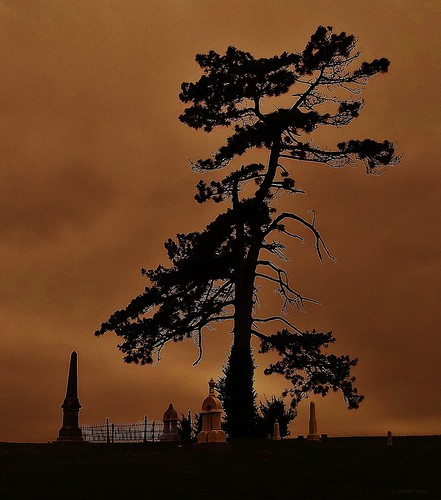 columbus sky tree cemetery grave graveyard clouds indiana haunted spooky burial sandhill
