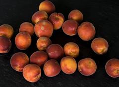 vegetable(0.0), pluot(0.0), plant(0.0), peach(1.0), produce(1.0), fruit(1.0), food(1.0), nectarine(1.0),