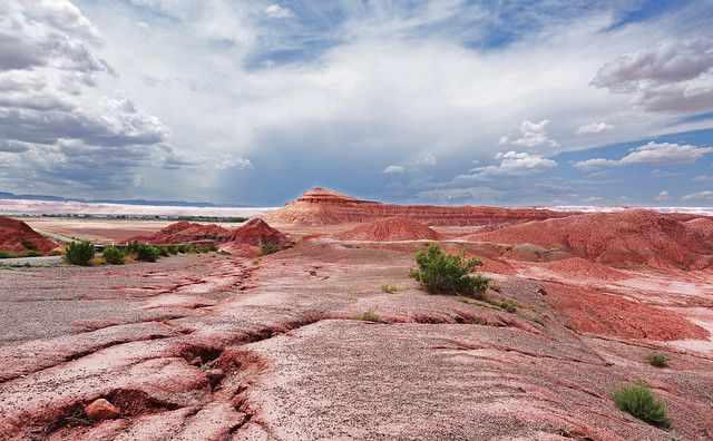 Pink and Red Desert