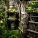 The Edge of the Magic Garden by Rekishi no Tabi