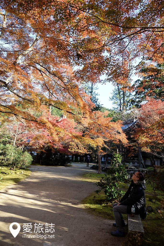 京都赏枫景点 高雄西明寺 21