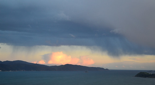 <p>Wellington Harbour</p>