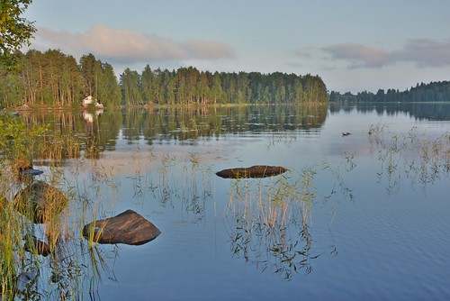 finland lake water evening summerevening summer landscape scenery