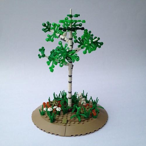 Birch / Aspen Tree
