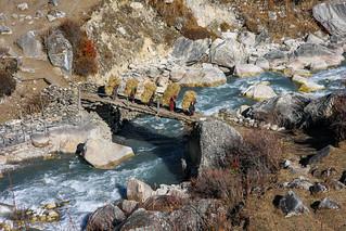 Nepal, 2010