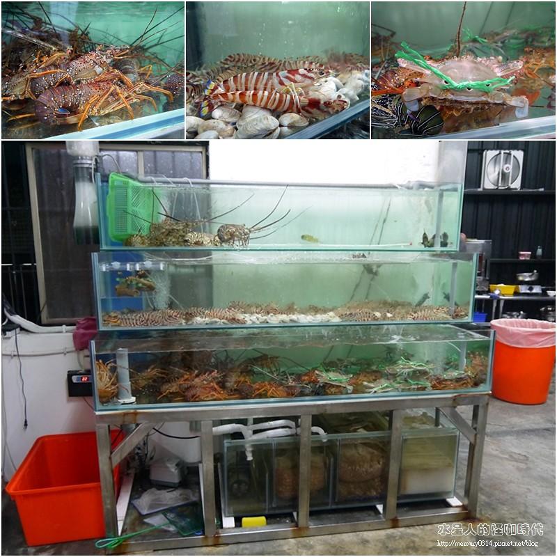 16746278284 94485bfdfe b - 熱血採訪。台中龍井【第一青海鮮燒物】鮮蚵、風螺、蛤蜊、龍蝦、大沙母一次滿足,