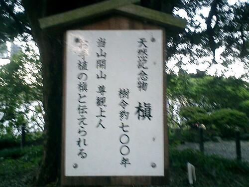 03.08.10母と兄への「十日参り」http://blog.so-net.ne.jp/_pages/user/auth/article/index?blog_name=mitch1&id=5355996