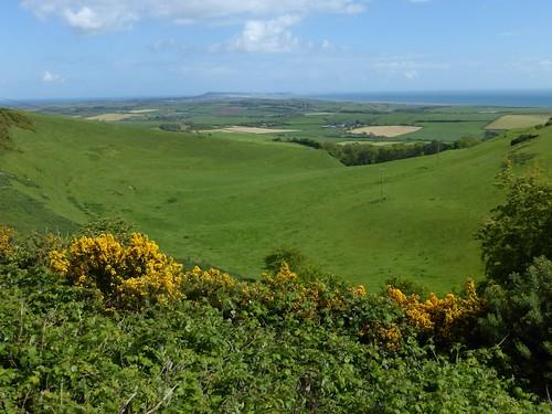 View front the South Dorset Ridgeway