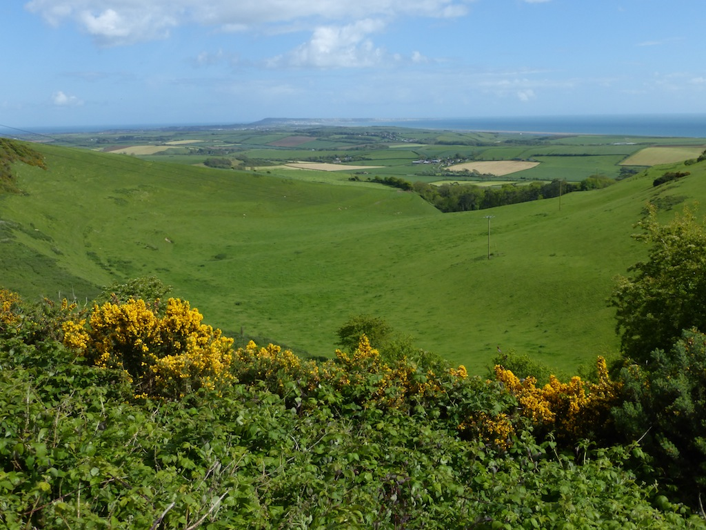 View front the South Dorset Ridgeway
