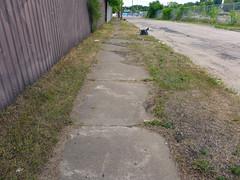 Worn sidewalk Caroline St. N.
