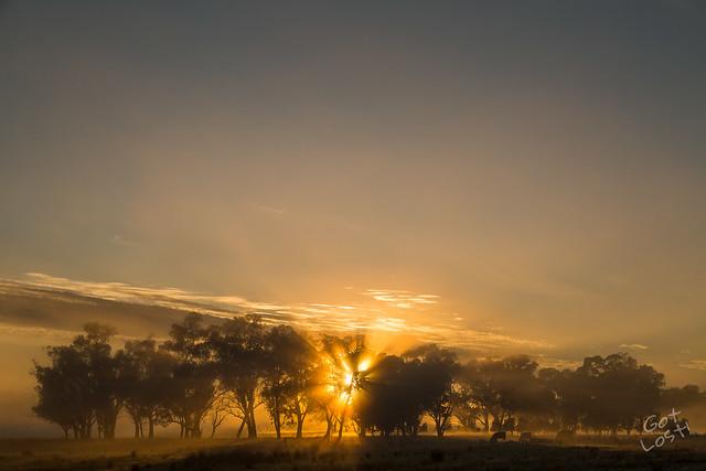 Road Trip: Sydney to Shepparton