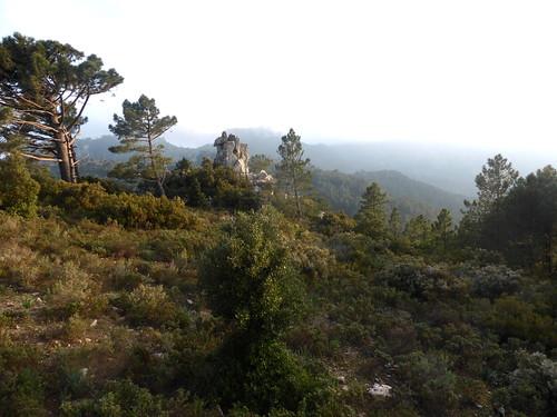 Le promontoire panoramique des bergeries de Renosu
