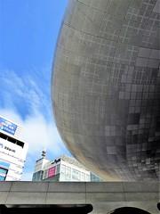 dongdaemun design plaza curve