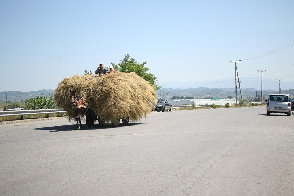 馬が現役 Albania Tiranë アルバニア ティラーナ 93日目
