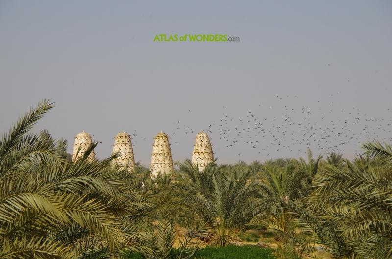 Mochilero Siwa Oasis