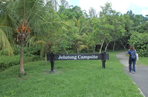 Jelutong Campsite (East) at Pulau Ubin