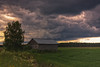 Birch Tree And A Barn House Under The Storm Clouds