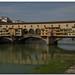 2014 Firenze, Pisa