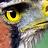 Daniel Mclaren .:. Costa Rica's buddy icon