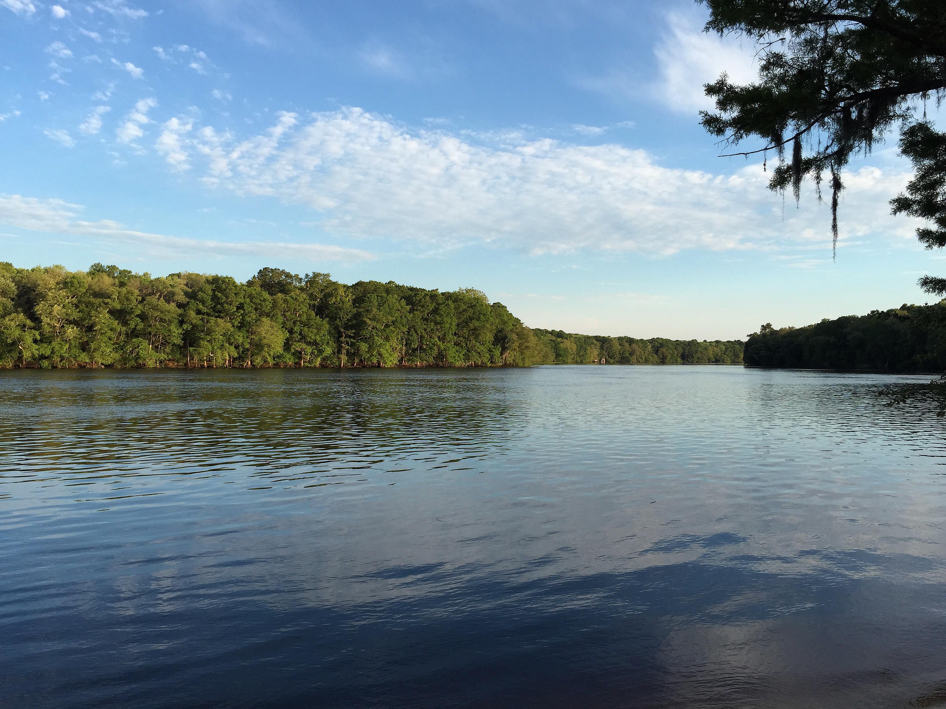 River Rise Preserve State Park Map - Florida - Mapcarta