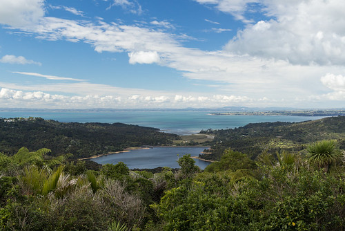 Manukau Harbour overlook