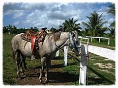 5. Costa Maya - 30.11.06