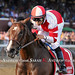 Songbird takes the GI Coaching Club American Oaks