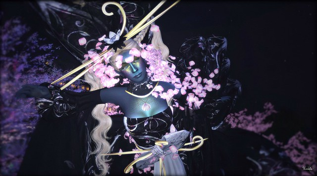 Midnight Sakura